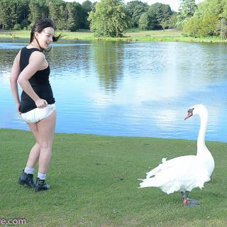 Mr Swan photo gallery by Her Kink