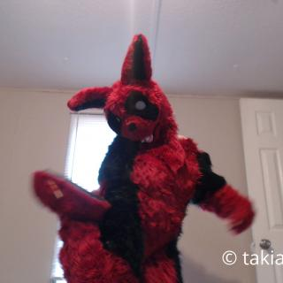 Fursuit Modeling stripping to nude photo gallery by Takiaya Balmone