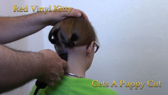 Kitty Gets A Puppy Cut video by Red Vinyl Kitty