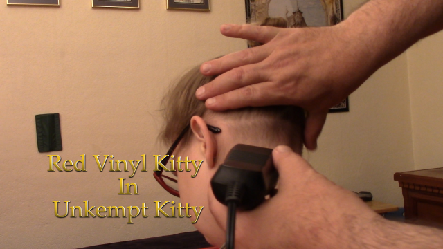 Unkempt Kitty video from Red Vinyl Kitty