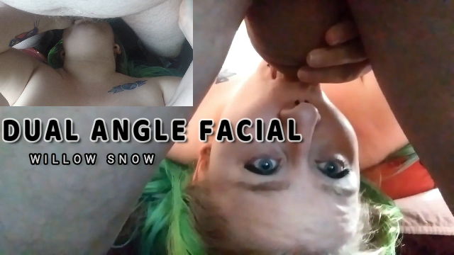 BBW Upside Down Dual Angle bj Facial video by WillowSnow